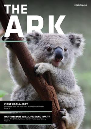 The Ark Newsletter