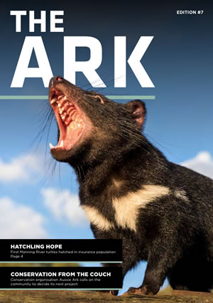 Ark 7
