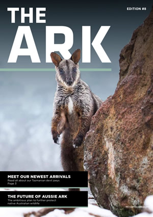 The Ark issue 8
