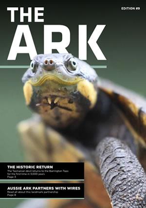 The Ark 9