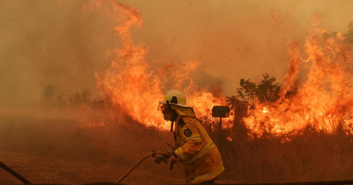 Aussie Wildlife Bushfire Funding Application